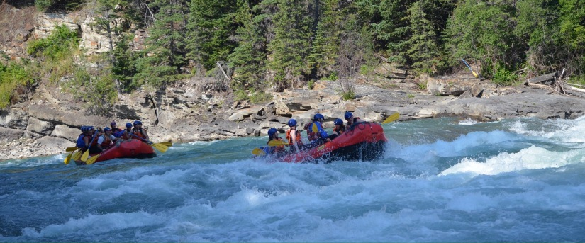 Whitewater – what a thrill!