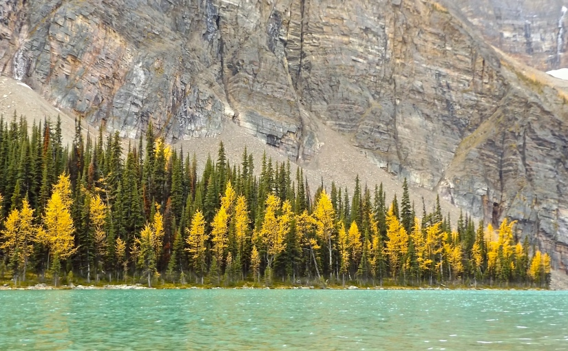 Rocky Mountain Fall (a fastseason)