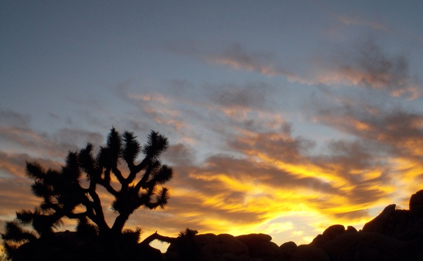Desert yearnings and a colourfulsunset!