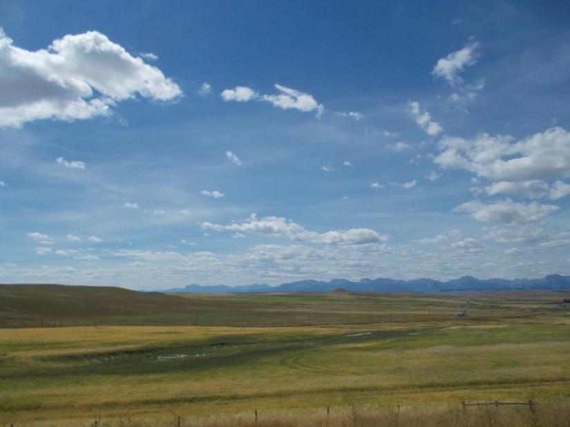 Montana medicine