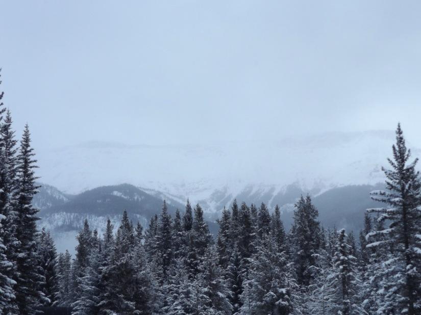 Snowed under? Take ahike!