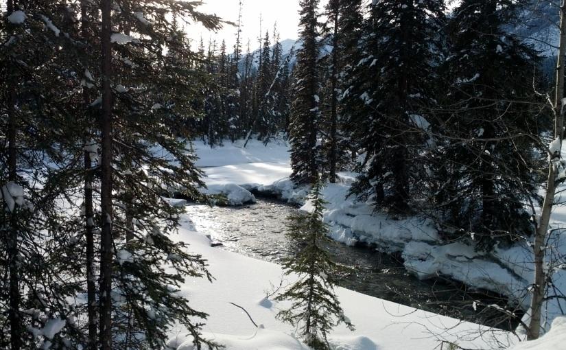 The Otterhead – fresh air and freshtracks