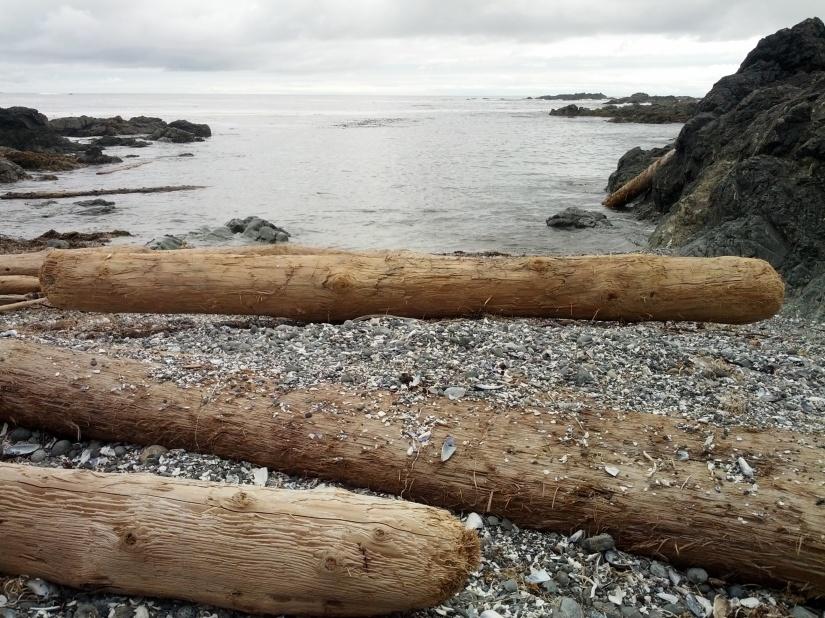 Logging on and loggingoff