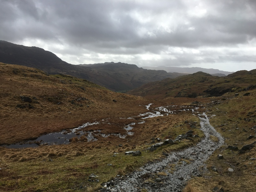 Eskdale exertions