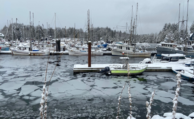Boats in the snow!